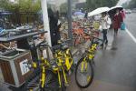 温州共享单车管理失序:记者多方举报无序停放,无人现身管理