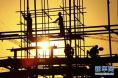 前11月房地产投资和销售增速双降
