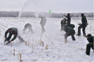 当四川兵哥在东北看到雪