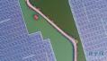 山东激发绿色低碳转型新动能 有效控制温室气体排放