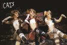 """音乐剧《猫》终于要来南京了 舞台道具都是伦敦""""原装"""""""