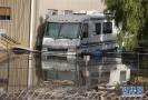 美国泥石流13人亡