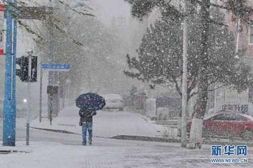 注意!山东多地降雪 这些高速临时封闭或限行