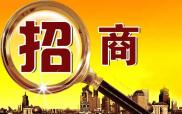 辽宁今年策划组织12项重点活动推动招商引资