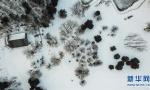 冬日的赫图阿拉故城