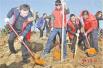 焦作市解放区干部群众节后积极参加植树活动