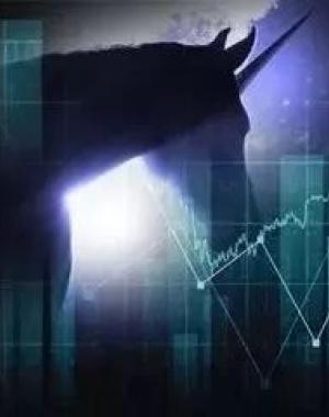 """""""独角兽""""光环下的股市众生相"""