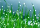 清明节都会下雨吗?河南清明节下雨的概率还不到一半