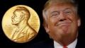 这次真定了 特朗普被提名为诺贝尔和平奖候选人