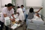 宁波一学校25名学生被黄蜂蛰伤 已全部妥善救治