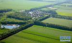 济南市力推2021年农业十大产业达百万亩 产值过千亿
