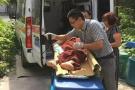 """病人已出院他却坚持接回来 杭州富阳""""任性""""医生被点赞"""
