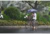 """台风""""安比""""预计于22日登陆浙江沿海"""