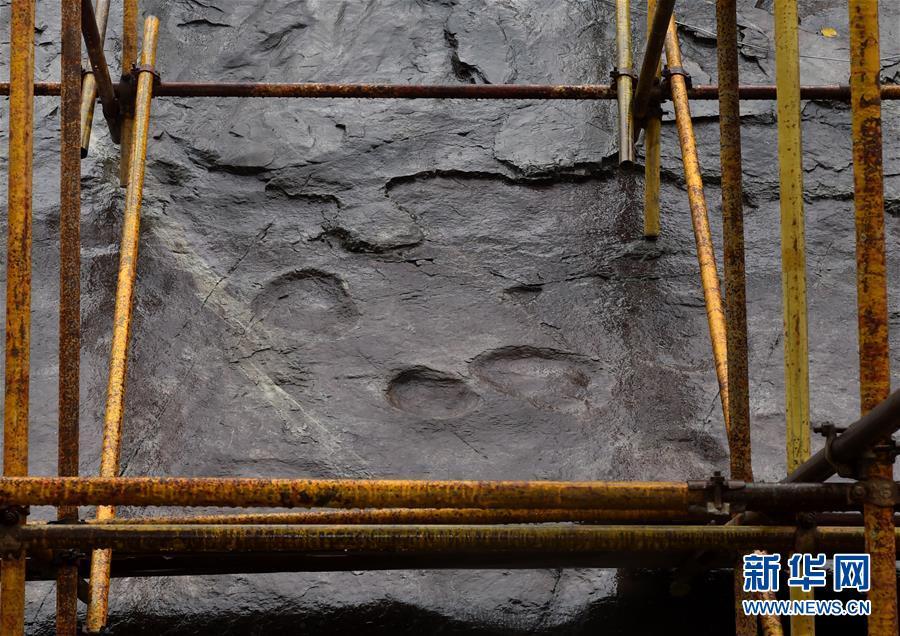 中希开展新一轮延庆恐龙足迹化石试验性保育国际合作
