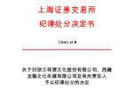 上交所:认定赵薇夫妇5年内不适合担任上市公司董监高(附全文)