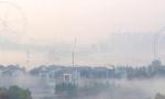 济宁高新区出现平流雾