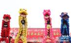 河北邯郸:舞龙舞狮闹新春