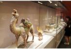 """聆听文明之间的对话:""""大美亚细亚——亚洲文明展""""等展览引发观众观展热情"""