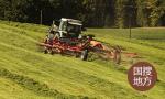山东烟台打破两项全国小麦单产纪录
