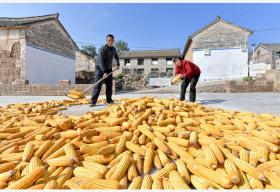 脱贫攻坚6年来 农村贫困发生率由10.2%降至1.7%