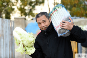 降温了!您家今年还囤大白菜吗?