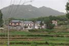 河南鲁山:绿水青山间 山民幸福的日子比蜜甜