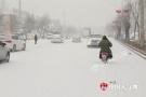 大连迎中到大雪局地暴雪 沈吉高速等通行受阻