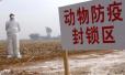 2004年1月23日 (甲申年正月初二)|中国公布首例确诊高致病性禽流感疫情