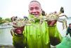 今年第一笼黄浦江大闸蟹开捕上市 产量价格基本稳定