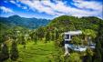 峨眉1.8万亩生态茶园茶香阵阵 小茶人采摘春茶