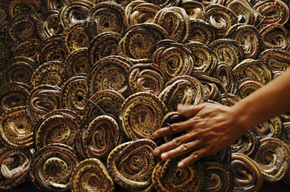 蛇皮手袋诞生记 原产地最贵150元