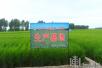 """黑龙江检验检疫局打造""""金字招牌"""" 20种农产品走向国际"""