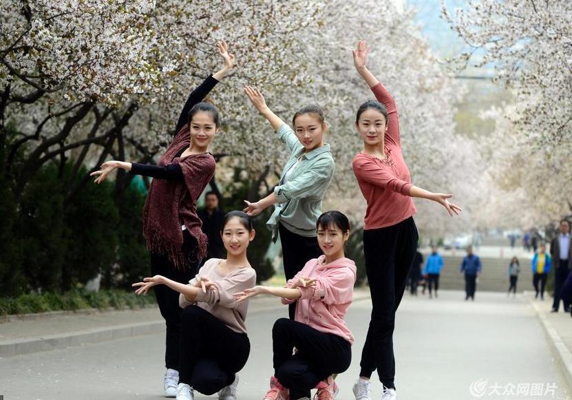 济南女大学生花海秀舞姿