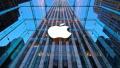 """苹果获准设厂 智能手机""""混战""""印度"""