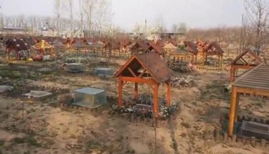 """北京 徐州/核心提示:宠物墓地必须持有""""无害化处理""""执照,大部分主人会以..."""