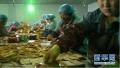 棉花肉松、吃辣条身亡均系谣言 59人传谣被追责!