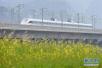 元旦小长假 长三角铁路计划增开列车41.5对
