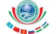 """确定了!2018""""上海合作组织峰会""""在青岛举办"""
