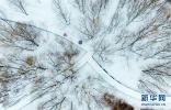那些被大雪覆盖的著名景点 恍若仙境