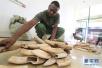 坦桑尼亚再度拍卖河马牙引争议