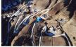 令人叹为观止!四川省阿坝藏族羌族自治州小金县美兴镇大坝村乡村公路鸟瞰