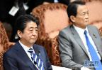 """""""地价门""""风波不减 近半数选民认为安倍应请辞"""