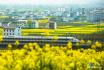 陕西汉中:开往春天的西成高铁