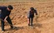 从偷排废水到建生态农场,劳役代偿让污染者完成环保救赎