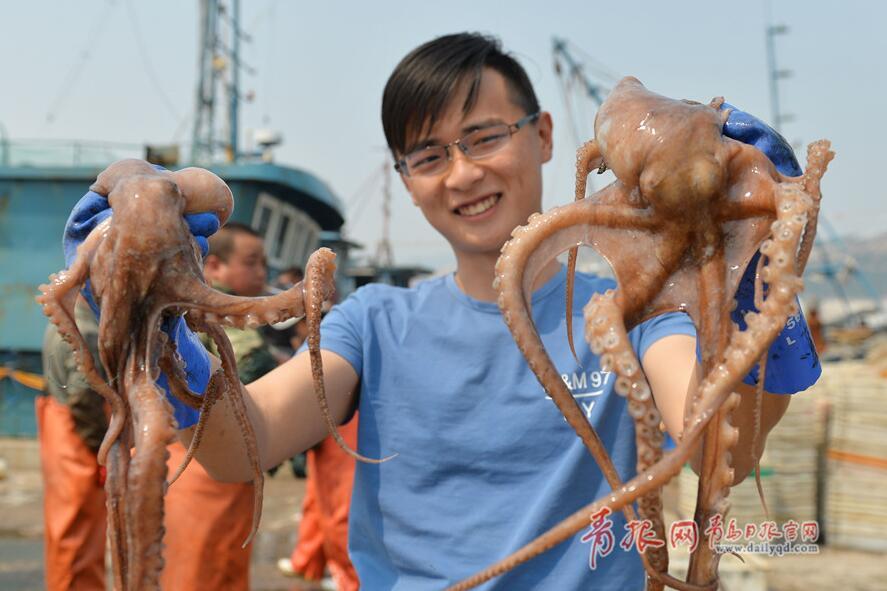 爱吃海鲜的看过来!