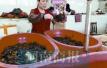 有福了!郑州小龙虾批发价十几天下跌10多元
