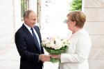 默克尔访俄之后 德国外长称两国关系已取得进步