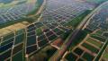 滨州:保护生态环境 建设美丽乡村