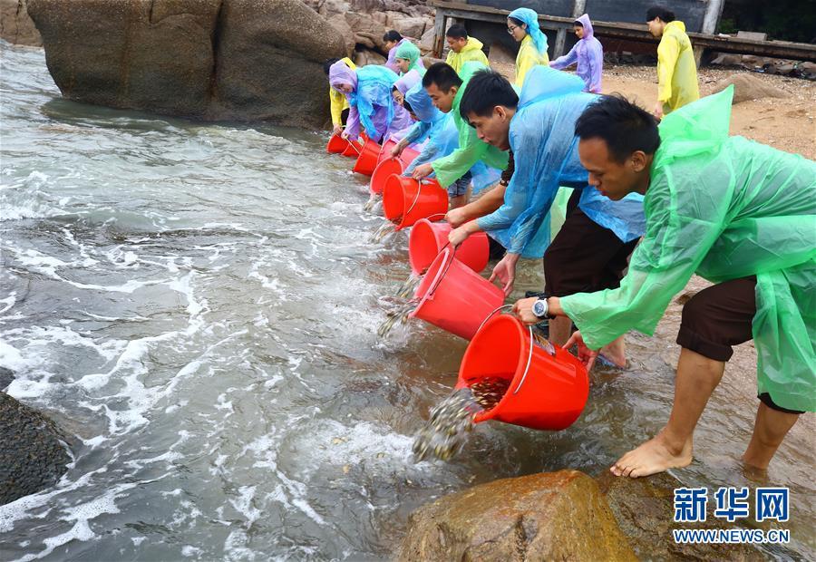 (环境)(7)世界海洋日:保护和可持续利用海洋