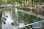 河北:到2022年城市全部完成地下水压采任务